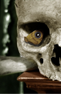 skull-with-butterfly-eye